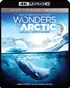 Wonders of the Arctic 4K + 3D (Blu-ray)