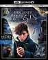 Fantastic Beasts and Where to Find Them 4K (Blu-ray)