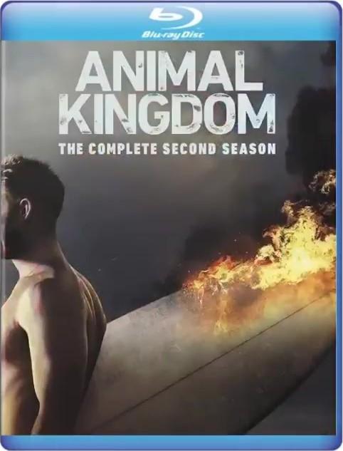 Animal Kingdom: The Complete Second Season (TV) (2017) Blu-ray