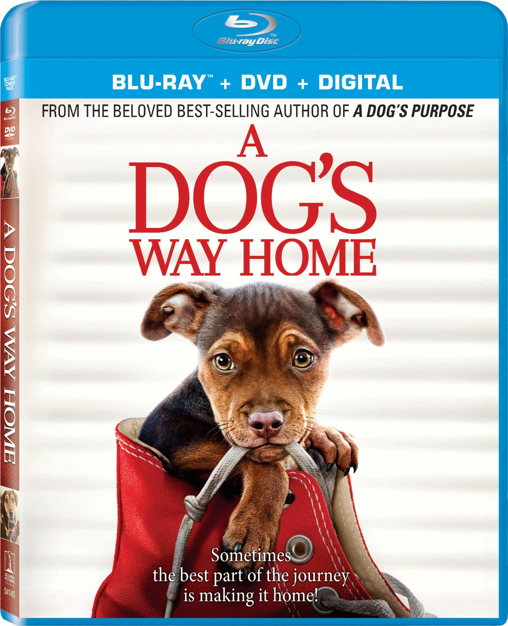 A Dog's Way Home (Blu-ray)(Region A)