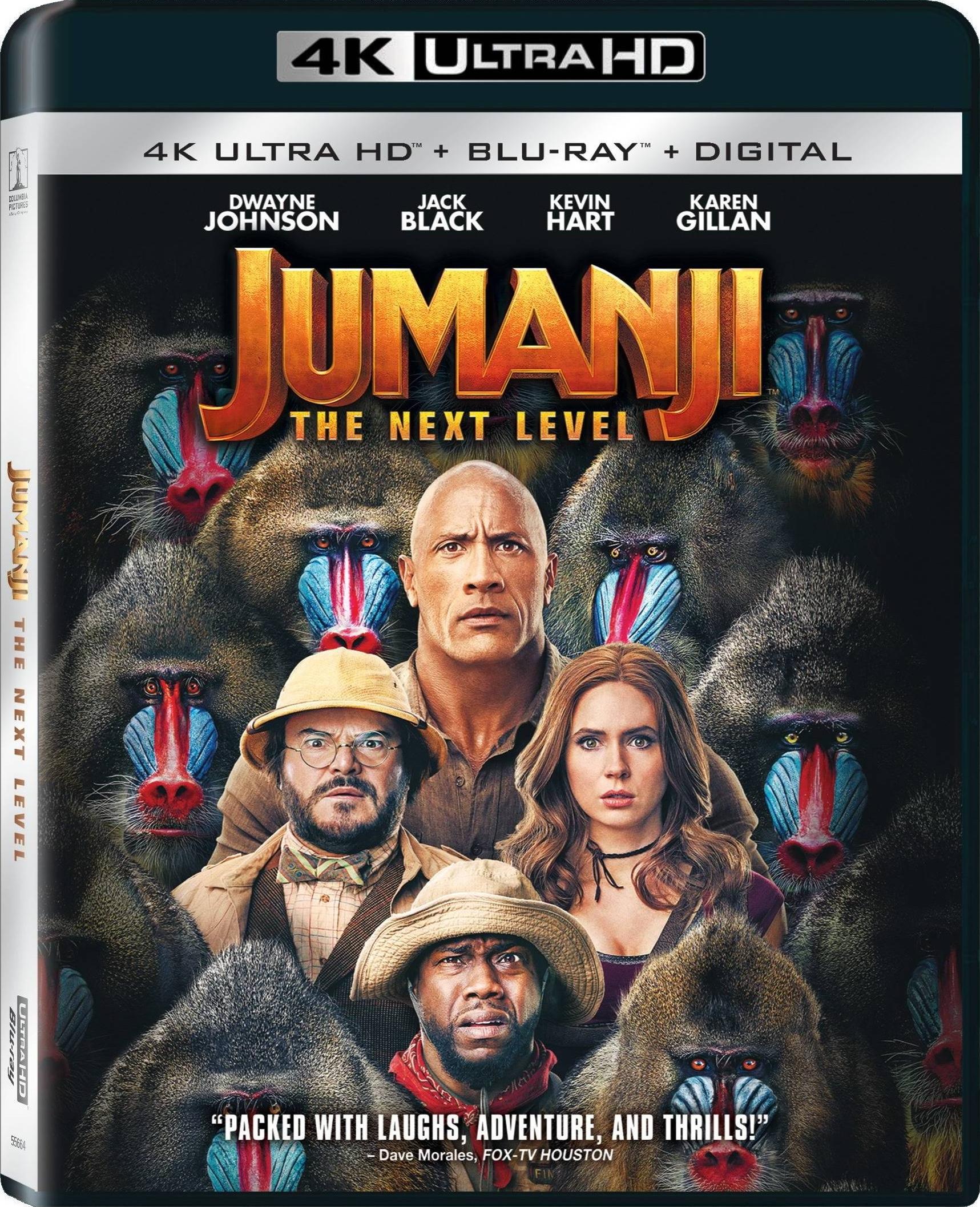 Jumanji: The Next Level 2019 BluRay 1080p DTS:X 7.1 AVC HYBRID REMUX-FraMeSToR