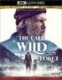 The Call of the Wild 4K (Blu-ray)