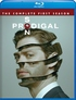 Prodigal Son: The Complete First Season (Blu-ray)