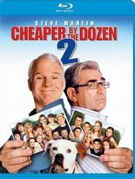 cheaper by the dozen 2 download