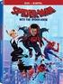 Spider-Man: Into the Spider-Verse (DVD)