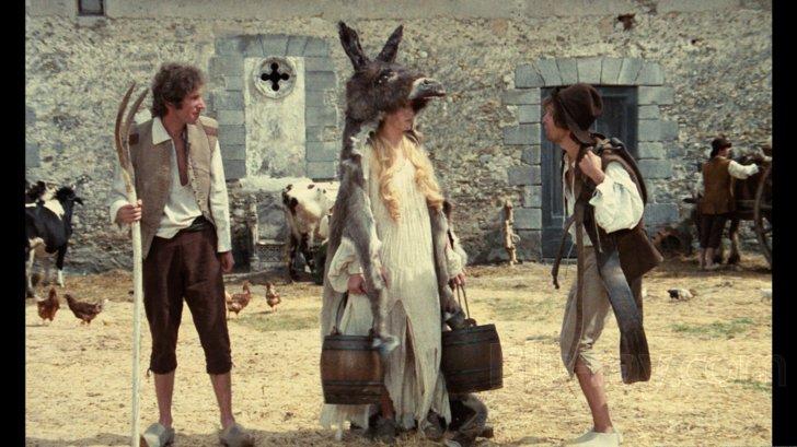Donkey Skin Blu-ray (DigiPack)