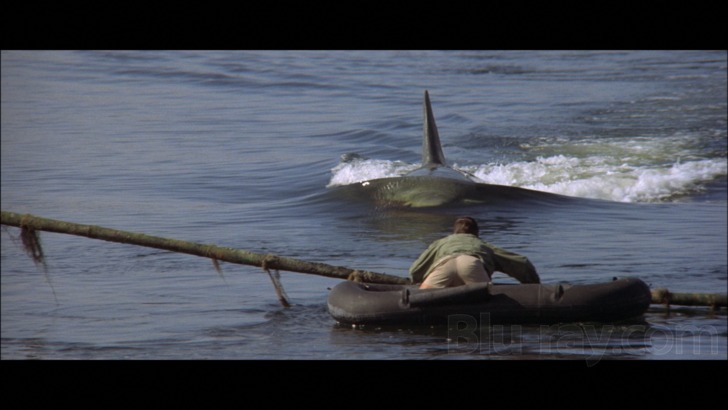 Jaws 2 Blu Ray Release Date June 14 2016