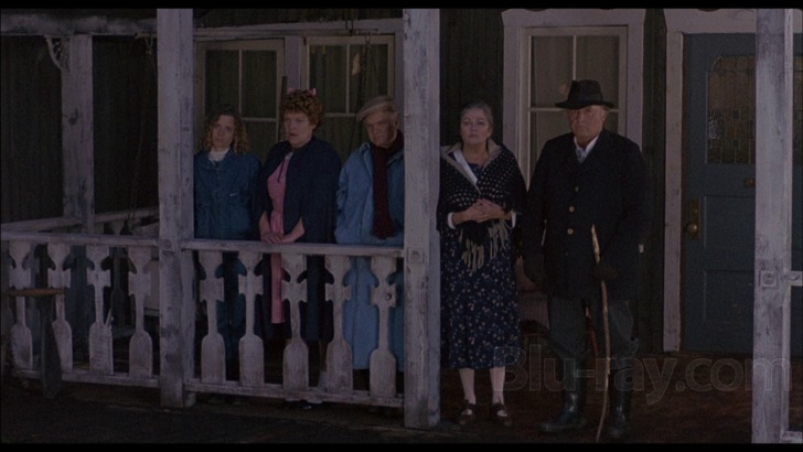 Image result for American Gothic 1988 fiona hutchison