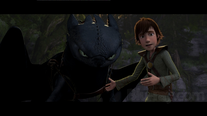 How To Train Your Dragon Blu Ray Release Date October 15 2010 Blu Ray Dvd