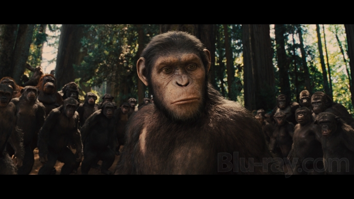 Rise Of The Planet Of The Apes Blu Ray Release Date December 13 2011 Blu Ray Dvd Digital